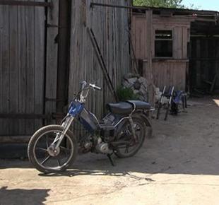 Всі Суми - Несовершеннолетних угонщиков мопеда задержали на Сумщине (Фото)