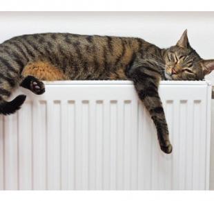 Всі Суми - На Сумщине продолжают снижать тарифы на отопление