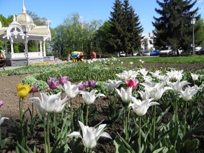 весна в Сумах