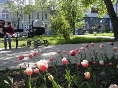 весна, цветы, новая жизнь