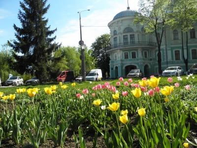 с видом на краеведческий музей