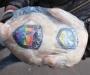 Сумчане пикетировали управление МВД с тушками цыплят в руках (фото)