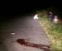 Страшное ДТП на Сумщине: водитель мотоцикла скончался на месте, пассажир попал в больницу (фото)