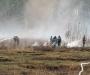 На Сумщине горят торфяники (фото)