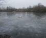 Очередная жертва тонкого льда: на Сумщине женщина, сокращая путь, утонула в пруду