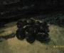 Сумские таможенники с центнером мяса задержали проводника поезда