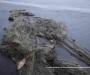 За ловлю рыбы на территории национального природного парка жителям Сумщины придется отвечать в суде
