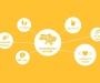 Фонд BrainBasket объявляет в Сумах набор на бесплатные курсы по программированию