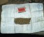 За хранение марихуаны житель Сумщины рискует оказаться за решеткой (ФОТО)