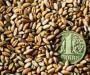 Бюджетные дотации аграриям Сумщины