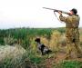 На Сумщине разрешат стрелять по средам, субботам и воскресеньям