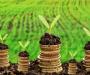 Полмиллиарда земельного налога на Сумщине