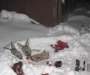 Кровавая живодерня на Сумщине (Фото)