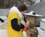 Волонтеры СумГУ помогают Сумском ОЗЖ (Фото)