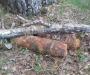 За сутки на Сумщине 11 боеприпасов обнаружено, 6 обезврежено (Фото)
