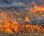 В Сумах возле детского лагеря тушили пожар
