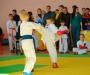 Итоги 5 турнира по каратэ памяти Валентина Угнича