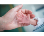 У вересні лелека приніс на Сумщину 700 немовлят