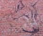 В Сумах появился прозрачный волк