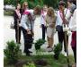 Сумські школярі висадили дерева замість запускання кульок