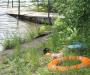 Официальный купальный сезон в Сумах начался с брифинга (Фото)