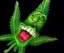 В Сумах задержали наркомана