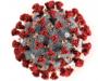В Сумах произошла новая коронавирусная вспышка