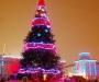 В Сумах на Рождество сделают ледовые скульптуры