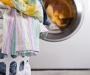 Совет дня: Уход за стиральной машиной