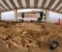 Археологи обнаружили скелет мамонта около Парижа