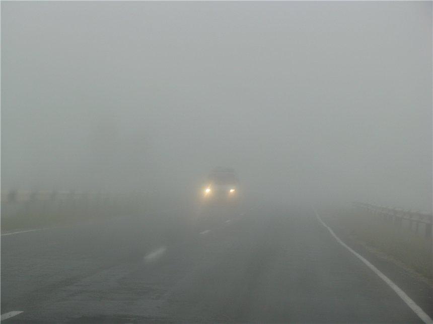 На Сумщине туманы, водителей просят быть осторожными на дорогах